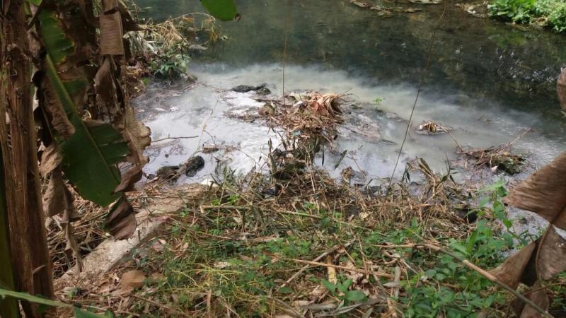 Surat Terbuka Slamet Harjo Tentang Tindak Lanjut Prokasih Di Desa Siraman ke Dinas Lingkungan Hidup dan BLH Provinsi